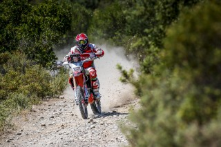 SRR15_Stage1_Goncalves_01402_AA