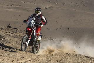 Atacama16_Caimi_0228_rz