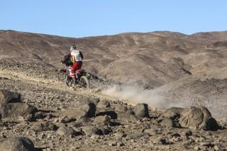Atacama16_Caimi_0244_rz