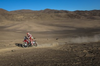 Atacama16_Goncalves_0041_rz