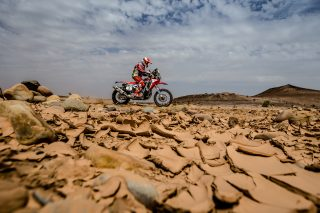 teamhrc16_morocco_goncalves_22228_mc