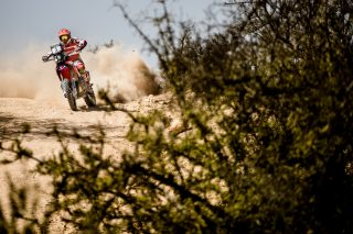 teamhrc16_morocco_goncalves_61226_mc