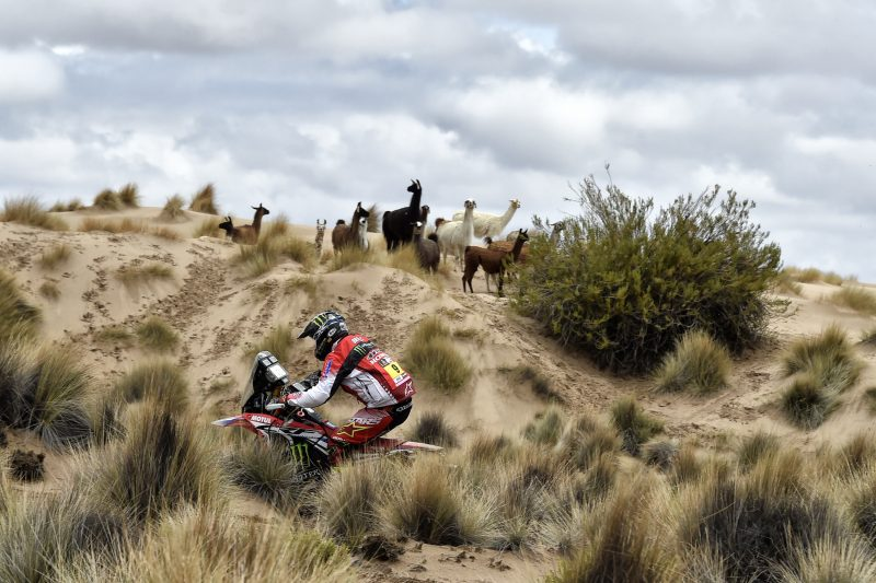 One-two for the Monster Energy Honda Team in the Dakar marathon stage. Brabec wins his first Dakar stage