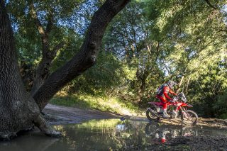 MEHT21_Andalucia_Stage2_Quintanilla_7098_rallyzone